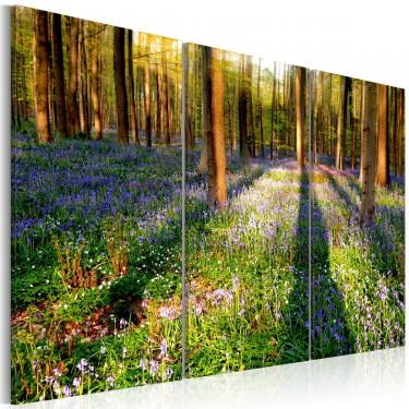 Obraz  Wiosenny las