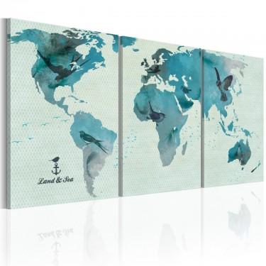 Obraz  Ornitologiczna mapa świata