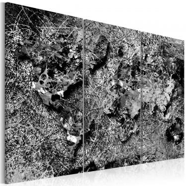 Obraz  Mapa świata Szara nić
