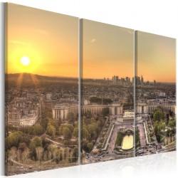 Obraz - Widok z Wieży Eiffla (3-częściowy)