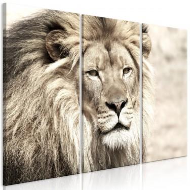 Obraz  Król zwierząt (3częściowy) beżowy