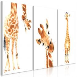 Obraz Śmieszne żyrafy (3częściowy)