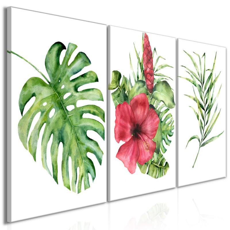 Obraz  Czerwony hibiskus (3częściowy)