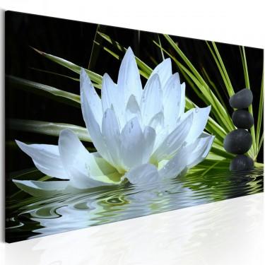 Obraz  Ogród zen (1częściowy) wąski