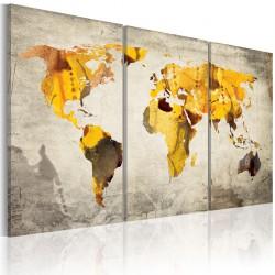 Obraz - Słoneczne kontynenty - tryptyk