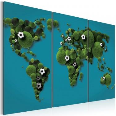 Obraz  Największe boisko świata  tryptyk