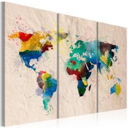 Obraz - Świat kolorów - tryptyk