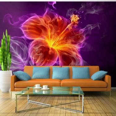 Fototapeta  Ognisty kwiat w purpurze