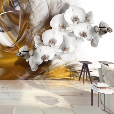 Fototapeta  Orchidea w ogniu
