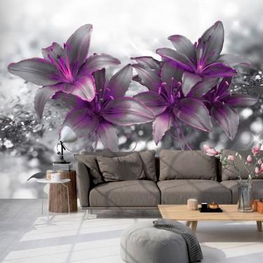 Fototapeta  Sekret lilii