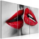 Obraz Hot lips