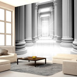 Fototapeta - Antyczny Partenon