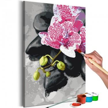 Obraz do samodzielnego malowania  Różowa orchidea