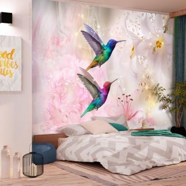 Fototapeta  Kolorowe kolibry (różowy)