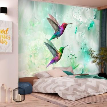 Fototapeta  Kolorowe kolibry (zielony)