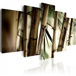 Obraz Azjatycki las bambusowy