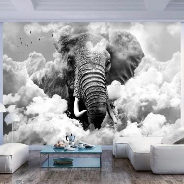 Fototapeta  Słoń w chmurach (czarnobiały)
