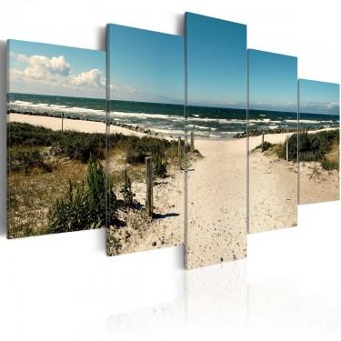 Obraz  Plaża marzeń