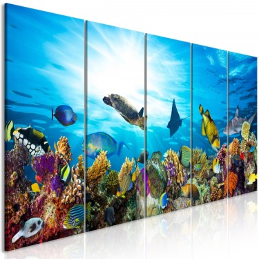 Obraz  Rafa koralowa (5częściowy) wąski