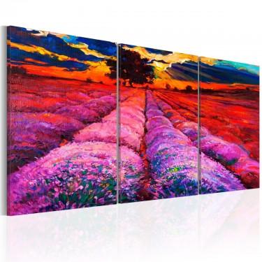 Obraz  Kraina kolorów