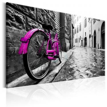 Obraz  Vintage Pink Bike