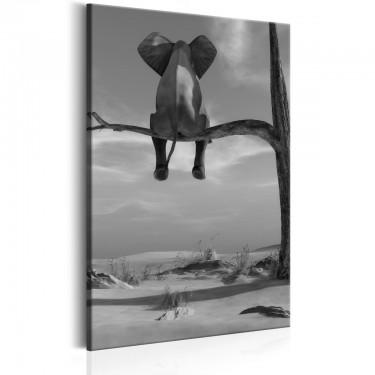 Obraz  Odpoczywający słoń