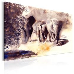 Obraz  Akwarelowe słonie