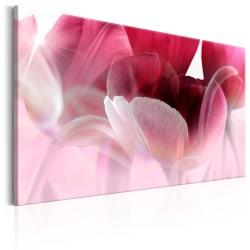Obraz  Natura Różowe tulipany