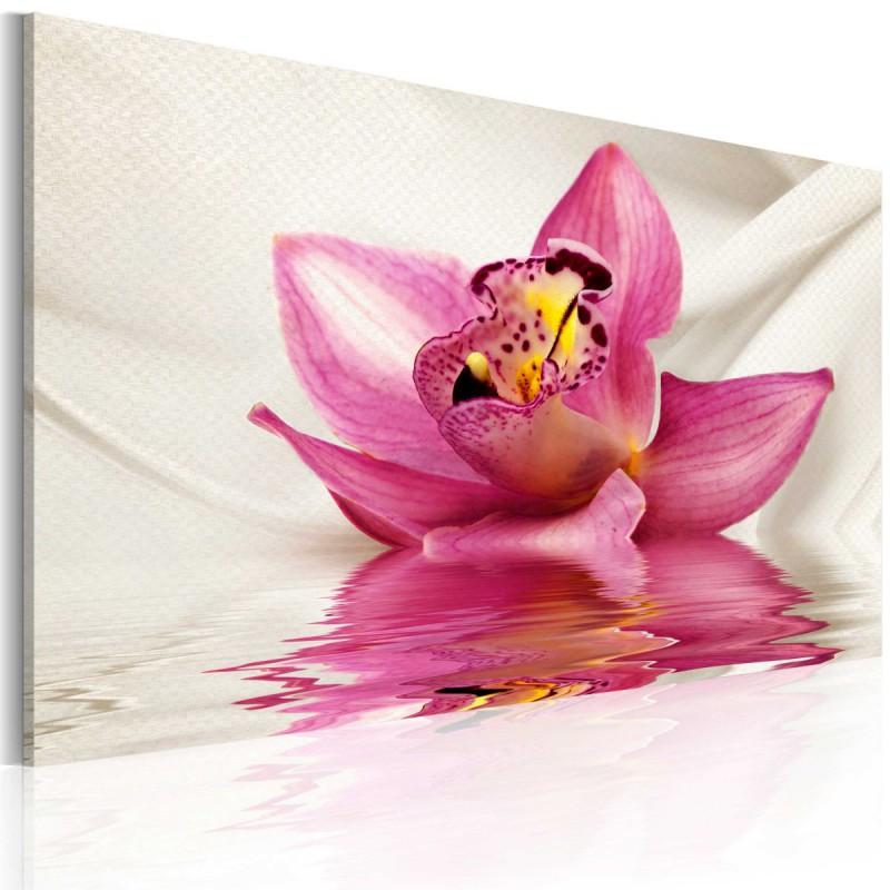 Obraz  Unusual orchid