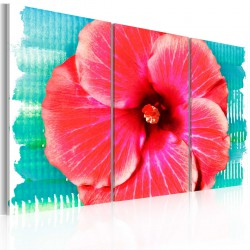 Obraz - Hawaiian flower - triptych