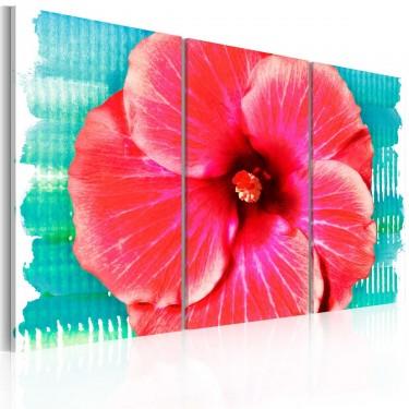 Obraz  Hawaiian flower  triptych