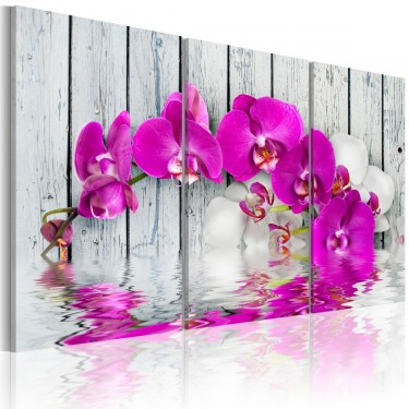 Obraz  harmonia orchidea  tryptyk