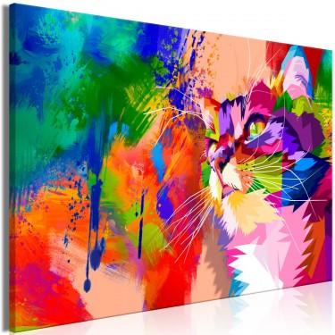 Obraz  Kolorowy kot (1częściowy) szeroki