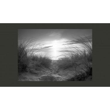 Fototapeta  plaża (czarnobiały)
