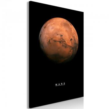 Obraz  Mars (1częściowy) pionowy