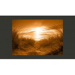 Fototapeta  plaża (sepia)