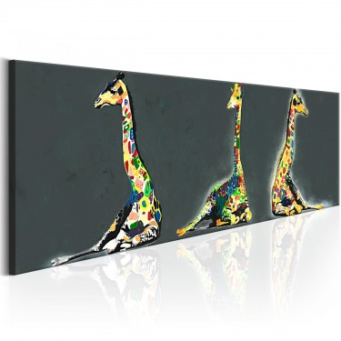 Obraz  Kolorowe żyrafy