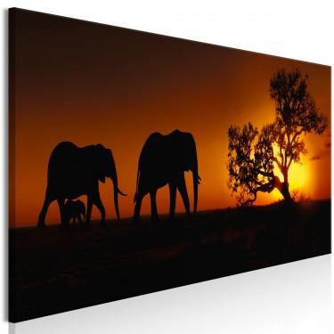 Obraz  Rodzina słoni (pomarańczowy)