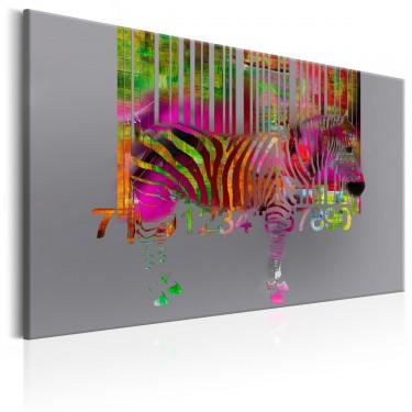 Obraz  Kod zebry