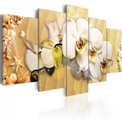 Obraz - Plaża i orchidea