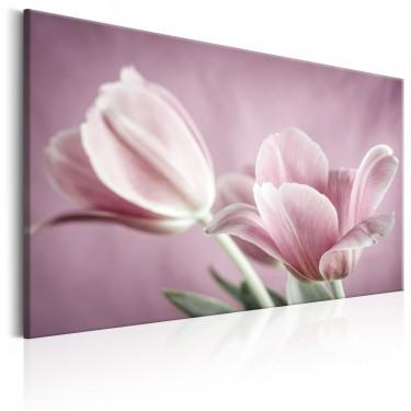 Obraz  Romantyczne tulipany