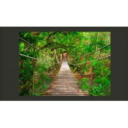 Fototapeta  Most pośród zieleni