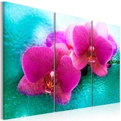Obraz - Turkus i orchidea