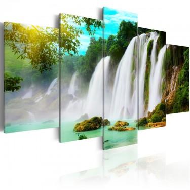 Obraz  Natures miracle