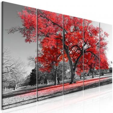 Obraz  Jesień w parku (5częściowy) wąski czerwony