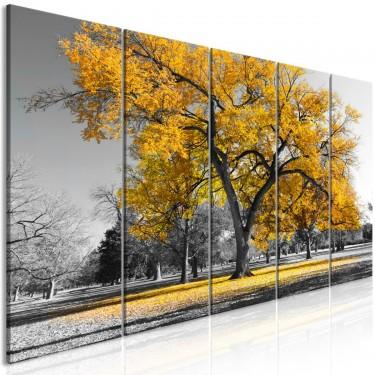 Obraz  Jesień w parku (5częściowy) wąski złoty