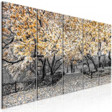 Obraz  Park magnolii (5częściowy) wąski pomarańczowy