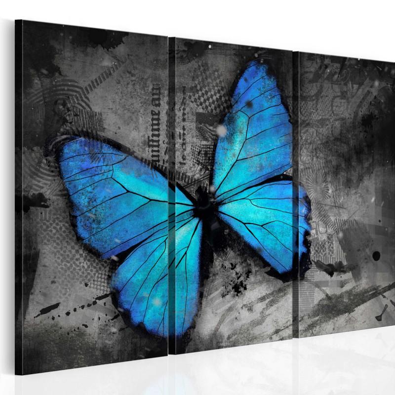 Obraz  Studium motyla  tryptyk