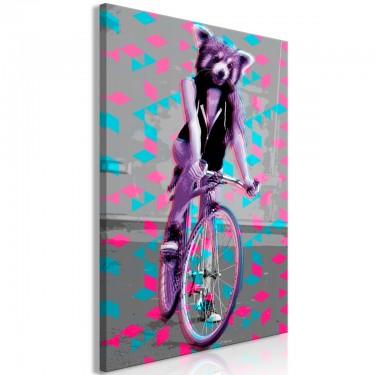 Obraz  Szop na rowerze (1częściowy) pionowy