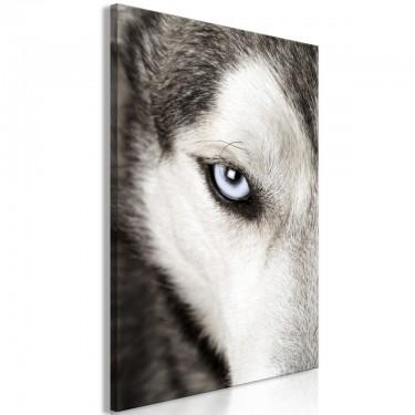 Obraz  Psie spojrzenie (1częściowy) pionowy